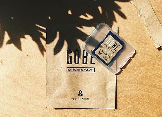 Gobe SD Memory Card