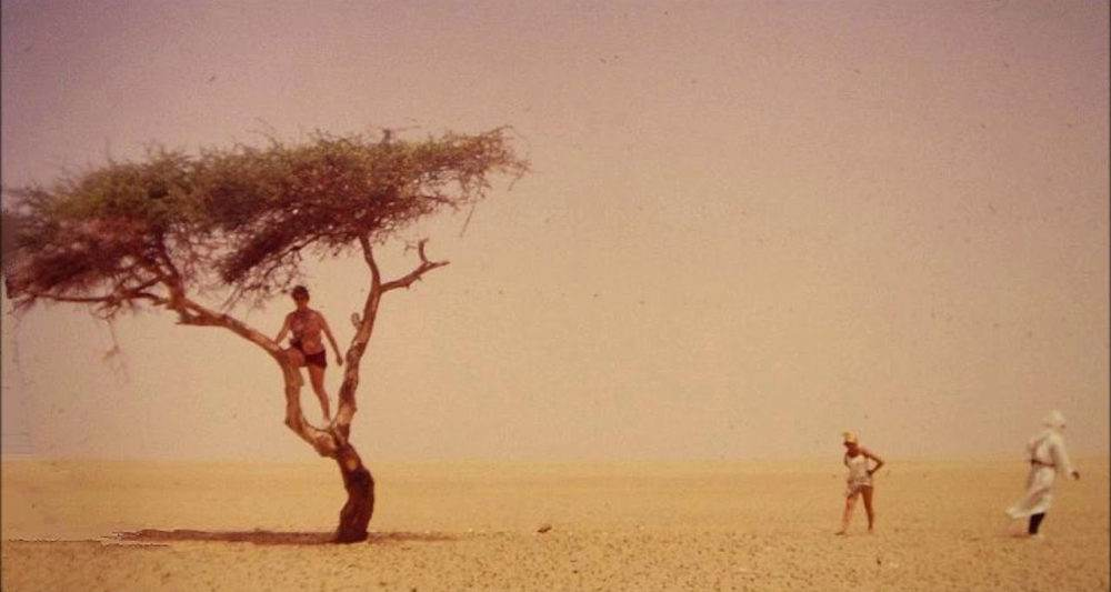 Last Tree of Ténéré