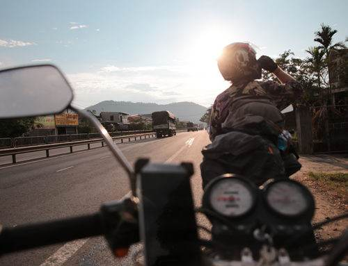 Two Wheels or Four Legs: What are the Best Ways to Travel?