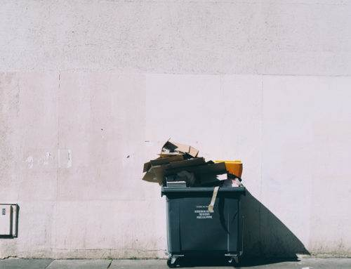 Zero Waste: A Beginner's Guide to a Mindful Lifestyle