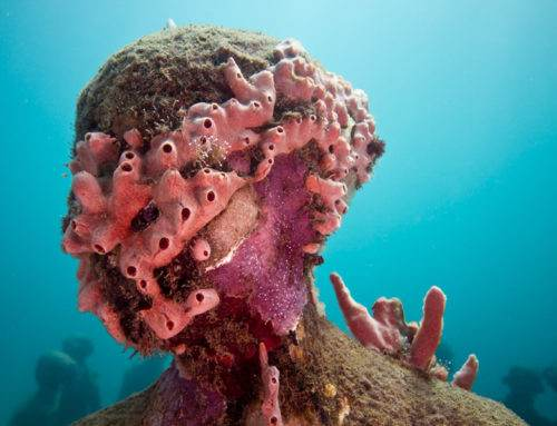 The Underwater Art Installations Preserving Our Marine Life