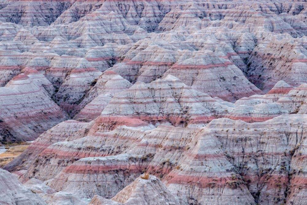 Badlands National Park Artist In Residence